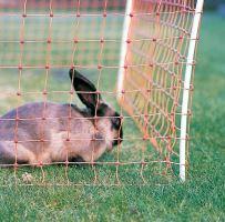 Vodivá síť pro králíky, výška 65 cm, délka 50 m, 1hrot, oranžová